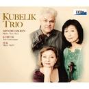 メンデルスゾーン:ピアノ三重奏曲第 1番、クーベリック & スーク/クーベリック・トリオ