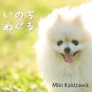 いのちめぐる/Miki Kakizawa