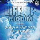 汗と涙の結晶 -Single/SHADY & KAWMAN