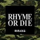RHYME OR DIE/韻踏合組合