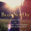 Brand New Day (feat. Lil Jon, Tpain,French Montana, We are Toonz & Mickey Shioh)/Stephen Oaks