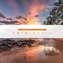 究極の癒しオルゴール/セルフ・メディケーション・ミュージック