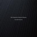 invisible flickers/Shin Sasakubo & Akiyuki Okayasu