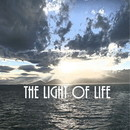 The Light of Life feat.GUMI/るめに