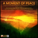 A moment of peace/Various Artist