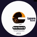 Never Know EP/VICKYPRODUCTION