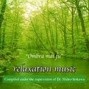 糸川英夫博士監修 によるリラクゼーション ミュージック VOL1 オンブラマイフ~/レックス・サウンド・オーケストラ