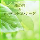 雨の日とシューベルトのセレナーデ/自然の音