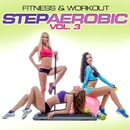 Fitness & Workout: Step Aerobic Vol. 3/Personal Trainer Mike