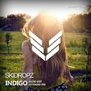 Indigo/SkiDropz