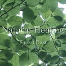 Natural Healing Forest Best/神山純一