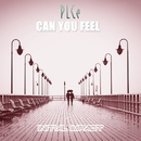 CAN YOU FEEL/PLCe