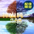 神山純一作品集 seasons/TENDER SOUND JAPAN