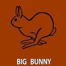 Checked/Big Bunny & 21 ROOM