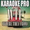 WTF (Where They From) (Originally Performed by Missy Elliot) [Instrumental Version]/Karaoke Pro