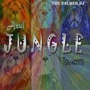 Jungle/The Palmer DJ