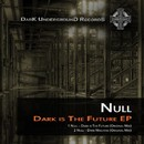Dark is The Future EP/Null