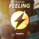 Feeling/Franklin Dam