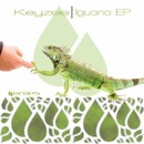 Iguana/Keyzee