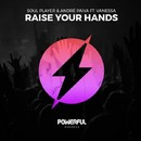 Raise Your Hands/Soul Player
