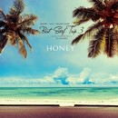 HONEY meets ISLAND CAFE -Best Surf Trip 3- mixed by DJ HASEBE/OLD NICK aka DJ HASEBE