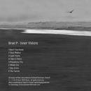 Inner Visions/Brad P