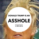 Donald Trump Is An Asshole/Shit From Hell