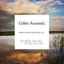 ケルティック・アコースティック - Relaxing Natural Celtic Music Vol.1/Various Artists