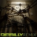 Room 873 (Digibilly Remix)/P'like