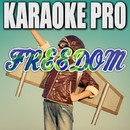 Freedom (Originally Performed by Pitbull) [Instrumental Version]/Karaoke Pro
