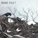 Usual/Brake Fault