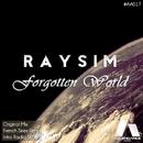 Forgotten World/RAYSIM