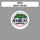 Need You EP/dPen