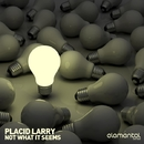Not What It Seems/Placid Larry