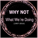 What We're Doing/Why Not