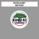 Meteor/Exoplanet