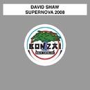 Supernova 2008/David Shaw