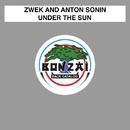 Under The Sun/Zwek and Anton Sonin