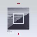 Captur/Dzec