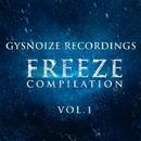 Freeze Compilation Vol.1/Dj IGorFrost & Danis Rise & Alex Nikitin & Beat Ballistick & Beatoz & Alex Panchenco & Marat Van Gent & Andrey BorisoV