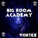 Vortex/Big Room Academy