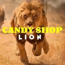 Lion/Royal Music Paris & Candy Shop
