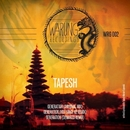 Generation EP/Tapesh & Hot Since 82 & DeMarzo