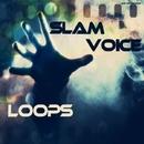 Loops/Slam Voice