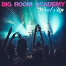 What's Up/Big Room Academy