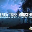 Kingston Be Wize/Enjoy Tribe Monster