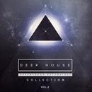 Deep House Collection, Vol.2/zhukhevich & The Mord & Dj IGorFrost & Danis Rise & DJ Alex V.I.T. & Seething Brains & IVAN CHIGO & Alex Panchenco & Ruby Ray & Attio & Chris Coulen