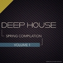 Spring Compilation Vol.1/Dj IGorFrost & Max Riddle & S.Poliugaev & Beatoz & Stereo Saw & Miroslav Wilde & Vlad Maut & Roway