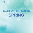 Blue Feather Records - Spring 2015/Ruslan Stiff & Aveo & Sergey Lisovski & Acoustic Beam & Aleks Nesk & Ganner & Andrew kn & Dantiss & Dim Mass & Oscar Netti & Trastler & Versetty & ReverBeat & Aurine & Bong Productions