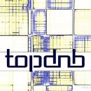 TOP DNB/Highland Bird & DJ Vantigo & Antent & Dj Egorio Koks & Dj Fat Maxx & Ky P.S & Va     Wild Out & Drunken Cat & DJ.Romana & Raimon Antent & Shvets